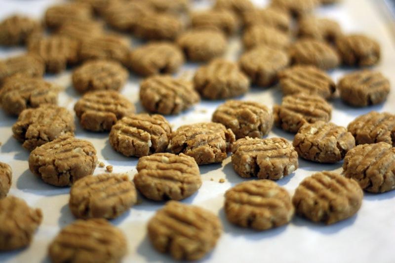 Peanut Butter Oatmeal Dog Treats 33flavors